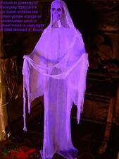 Purple Skeleton Life Size Halloween Hanging Ghost Flying Prop Decoration Glowing