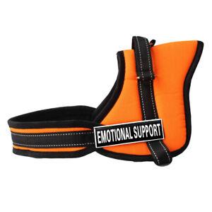 Adjustable Nylon Soft Training Dog Harness Vest Heavy Duty Pit Bull Husky Boxer