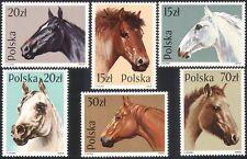 Polish Pet & Farm Animal Postal Stamps