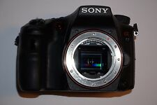 Sony Alpha slt-a77v 24.3 MP SLR-Fotocamera digitale-nero (solo chassis)