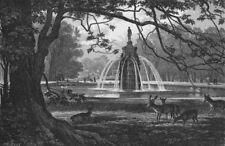 HAMPTON COURT.The Diana Fountain, Bushey Park 1888 old antique print picture