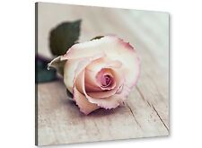 Vintage Shabby Chic French Rose - Cream Realism Canvas Modern 79cm - 1s278l