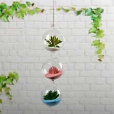 Transparent Hanging Stand Glass Flower And Plants Vase Modern Styles Home Decors