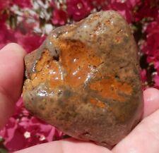 New listing Dinosaur Coprolite 7.4 Oz Petrified gold & green Dino Dropping / Lapidary