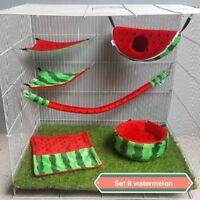 Hot Sale! 6 Pcs Sugar Glider Set B Watermelon Pattern Free 1 Pcs Fish Snack 30g.