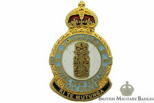 Queens Crown: Royal New Zealand Air Force 487 Squadron Unit RNZAF Lapel Badge