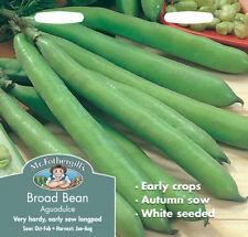 Mr. Fothergill's Bean Vegetable Plant Seeds
