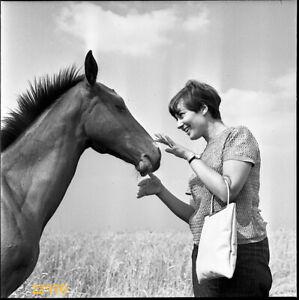 short haired girl smiling w horse, vintage fine art negative, 1960's