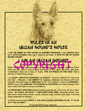 Rules In An Ibizan Hound's House (Wire)