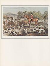 "1974 Vintage HUNTING DOGS ""RALPH JOHN LAMBTON on UNDERTAKER w HOUNDS"" Lithograph"