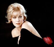 KIM NOVAK - PHOTO #25