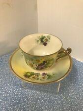 Vintage 'Royal Rudolstadt' Tea Cup and Saucer
