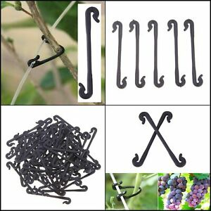 Vines Fastener Tied Clips Buckle Hook Garden Plant Grafting Clips Grape Support