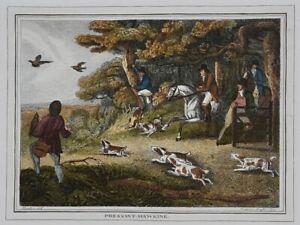 "Original Old Engraving : Howitt ""Pheasant Hawking""  Falconry, Hunting : FREE P&P"