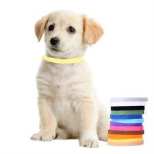 12 Welpen ID Halsbänder Klettband Welpenhalsband Welpenhalsbänder Hund Katzen DE