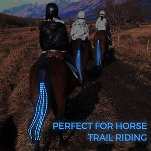 Horse Tail Light Kit