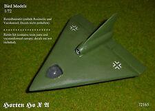 Horten Ho X A      1/72 Bird Models Resinbausatz / resin kit