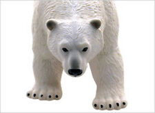 Polar Bear Realistic, Large Air-filled Vinyl Squeeze Toy - New - They're Huge!
