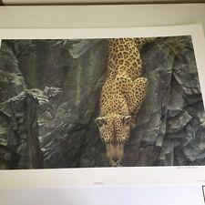 Limited Edition Print-Rock Face Descent-Leopard-ROBERT BATEMAN