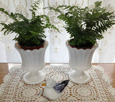 Urn Ceramic Home Dcor Vases eBay