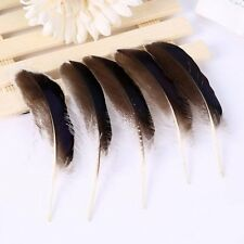 50pcs 10-15cm/4-6 inches Natural Duck Feathers DIY Plumes Accessories Fashion