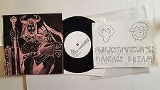 "MANIACS DREAM / Munuaissymposium 1960 SPLIT 7"" Lo-Fi Experimental Punk Folk"