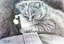 A Kitten with a Guitar original cat watercolor pencil drawing pet kitty art