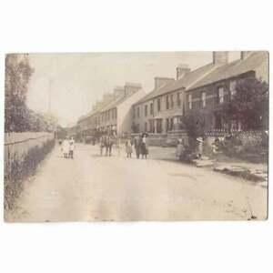 CARDIGAN Grangetown (North Road), RP Postcard by Desmond Unused