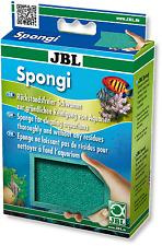 JBL Spongi (aquarium algae cleaner sponge scrub neutral safe terrarium tank)