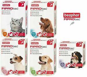 BEAPHAR Spot On Flea Tick Treatment CAT DOG S M L XL - 1 4 6 Pipettes FIPROTEC