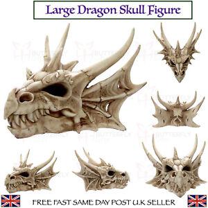 Large Horned Dragon Skull Ornament Fantasy Resin Figurine High Quality Gift New