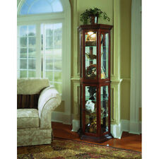Cherry Lighted Glass Shelf Display Curio Cabinet Furniture Home Living Room Den