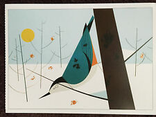 CHARLEY CHARLES HARPER Art Print New White Breasted Nuthatch  winter snow bird