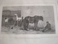 For Sale by Briton Riviere horses 1870 old print ref Z3