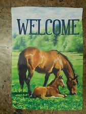 """WELCOME"" Brown Horse & Colt graze in Grass field, decorative HOUSE flag 2-sided"