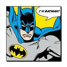 BATMAN ART POSTER ~ I'M BATMAN! 16x16 DC Comic Book