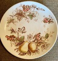 """One Dinner Plate NASCO Fruit Arbor Dinnerware Collection Dinner Plate 8.5"""""""