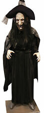 Halloween Non Animated LifeSize WITCH LEGENDS VERY DETAILED Prop Haunted House
