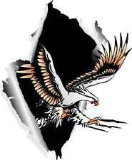 """CUSTOM EAGLE IN RIP HOOD DECAL 24"""" x 20"""""""