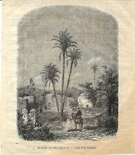 Stampa antica SAHARA Oasi di EL-MAIA 1868 Antique print