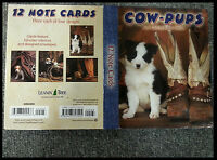 Leanin Tree Greeting Card Assortment 12 Card Box Set COWPUPS