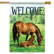 """Mother & Foal Horse House Flag Welcome Stable Spring Farm 28"""" x 40"""""""