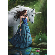 Enchanted Pool Anne Stokes Wall Plaque Unicorn Fantasy Mystic Art Canvas Picture