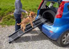 Équipements de transport pour chien
