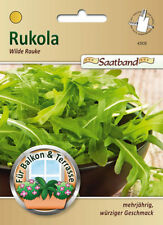 Wilde Rauke, Rukola - Diplotaxis tenuifolia, Rucola, Saatband, 43935