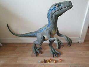 Jurassic world super colossal velociraptor blue toy dinosaur eats smaller dinos
