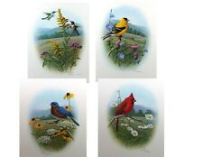 Four Songbird Prints by R. Louque Signed & Numbered Limited Editions - 16x20
