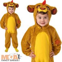 Kion Disney Fancy Dress Girls Boys Lion Guard King Kids Film Costume Outfit New