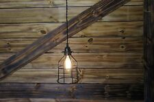 1- Edison Age Black cage Hanging Pendant Light ,Bulb guard, Industrial, Retro...