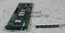 Crystal Vision UP e DOWN CONVERTER per SD e HDSDI con connettore sul retro
